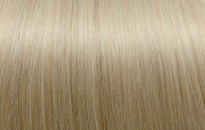1002. Very Light Ash Blond